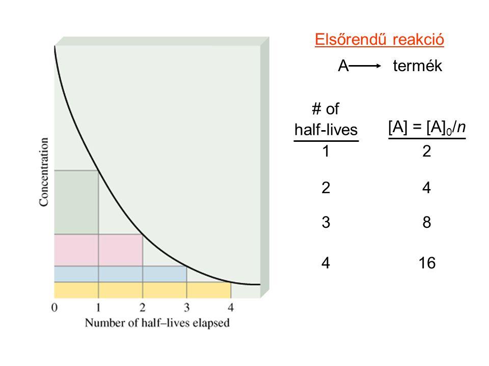 Elsőrendű reakció A termék # of half-lives [A] = [A]0/n 1 2 2 4 3 8 4 16